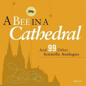a-bee-in-a-cathedral